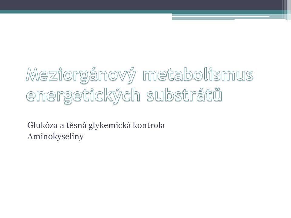Glukóza a těsná glykemická kontrola Aminokyseliny