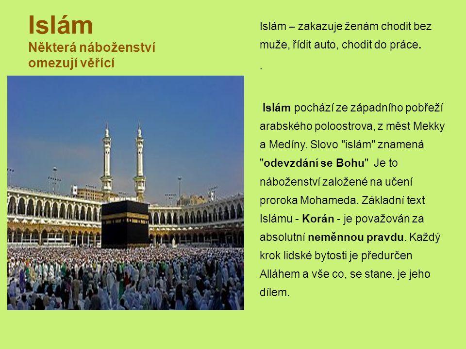 Islám Některá náboženství omezují věřící Islám – zakazuje ženám chodit bez muže, řídit auto, chodit do práce..