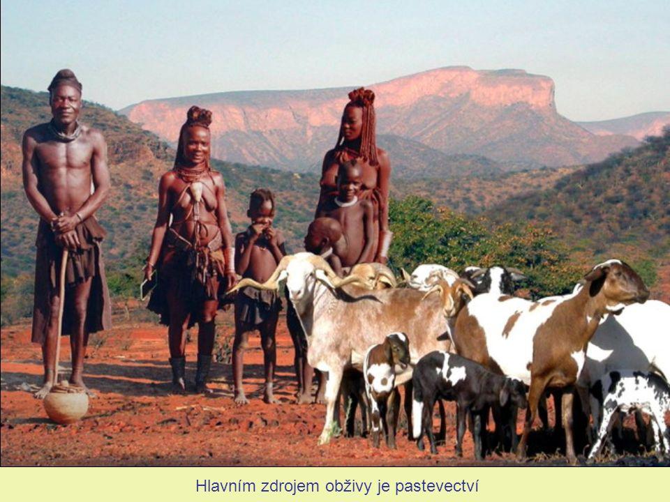 Jejich počet se odhaduje na 15 000 - 20 000 v Namibii a až 10 000 v Angole