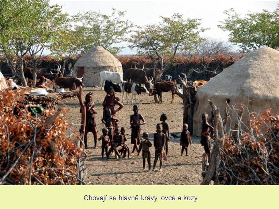 Himbská žena Společnost Himbů toleruje mnohoženství a předmanželský pohlavní styk
