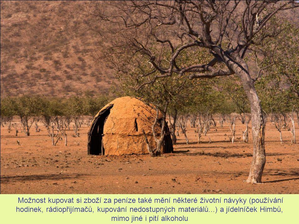 Himbští muži mají možnost vydělávat si peníze prací a prodejem zvířat mimo vlastní komunitu.
