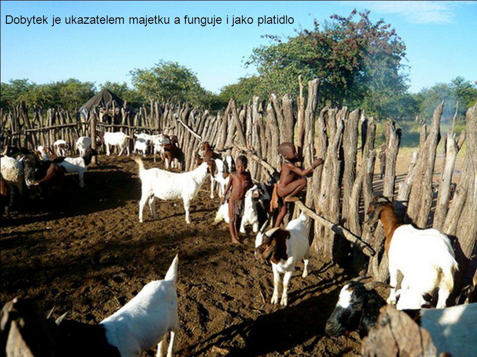 Ženy se starají nejen o zpracování mléka, ale i o dojení
