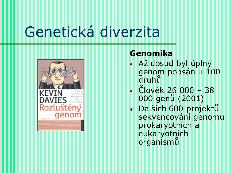 Genetická diverzita Genomika Až dosud byl úplný genom popsán u 100 druhů Člověk 26 000 – 38 000 genů (2001) Dalších 600 projektů sekvencování genomu prokaryotních a eukaryotních organismů