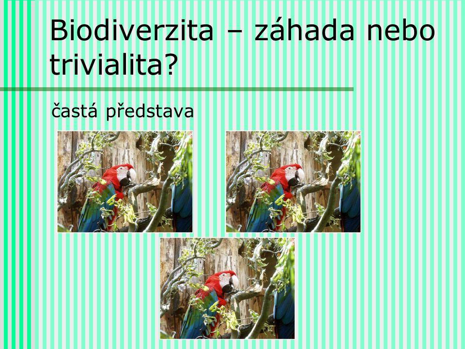 Biodiverzita – záhada nebo trivialita častá představa
