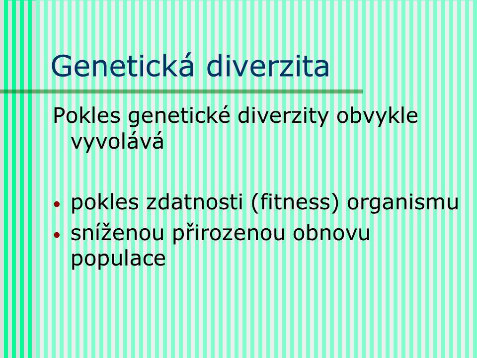 Genetická diverzita Pokles genetické diverzity obvykle vyvolává pokles zdatnosti (fitness) organismu sníženou přirozenou obnovu populace