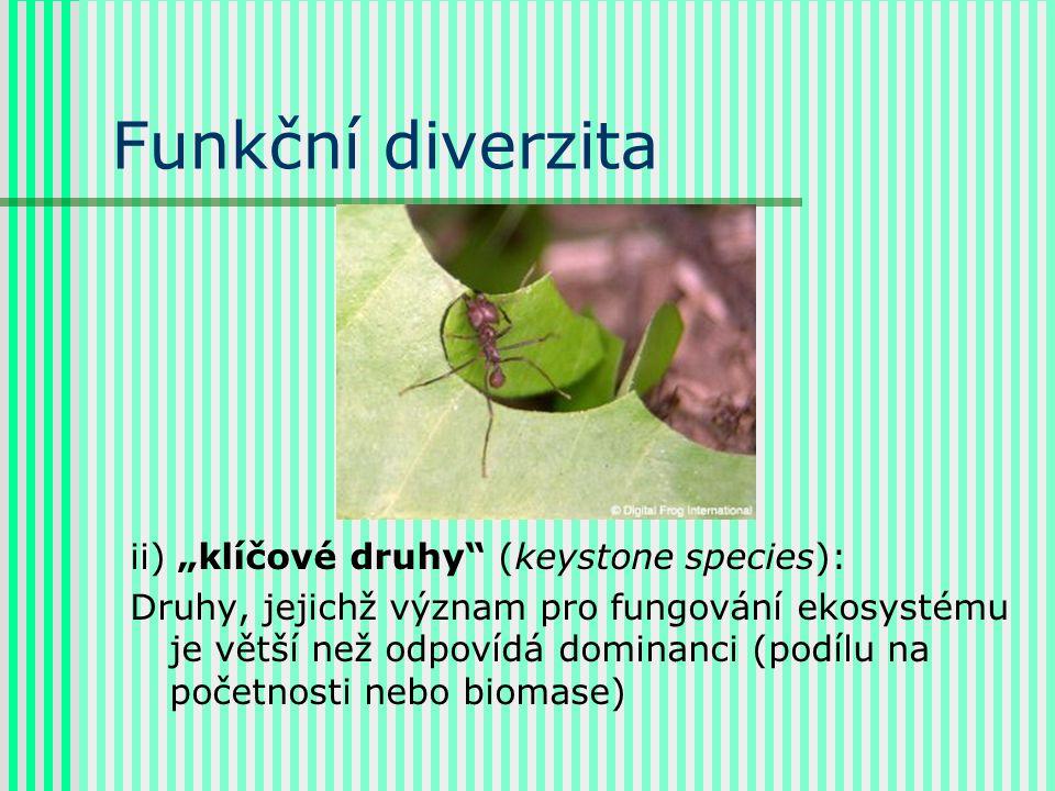 """Funkční diverzita ii) """"klíčové druhy"""" (keystone species): Druhy, jejichž význam pro fungování ekosystému je větší než odpovídá dominanci (podílu na po"""