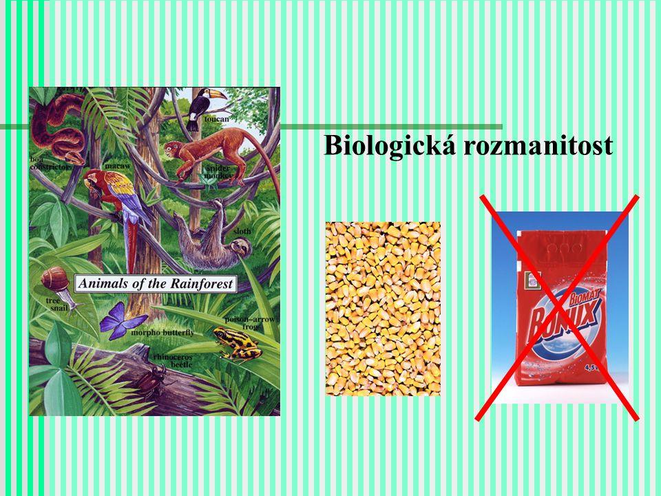 Biodiverzita: záhada nebo trivialita.