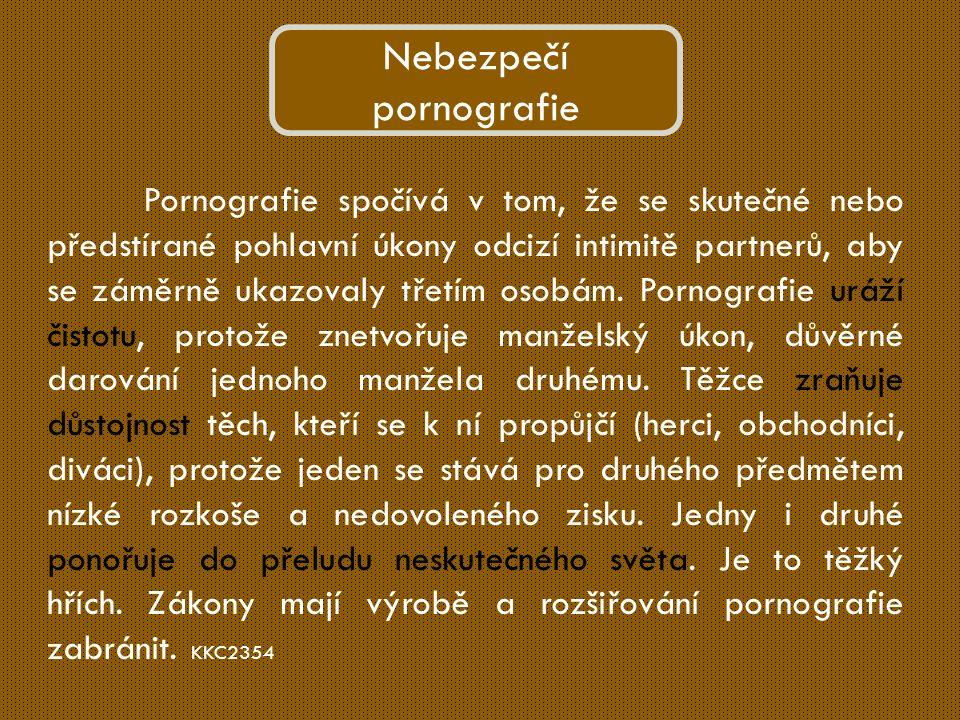 Pornografie spočívá v tom, že se skutečné nebo předstírané pohlavní úkony odcizí intimitě partnerů, aby se záměrně ukazovaly třetím osobám.
