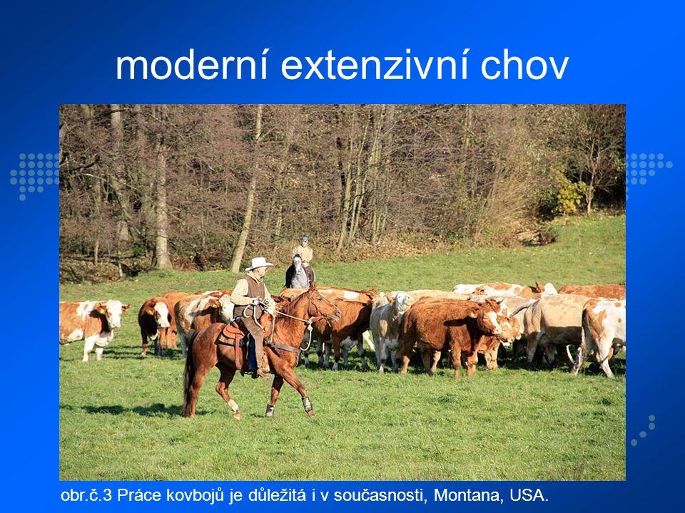 moderní extenzivní chov obr.č.3 Práce kovbojů je důležitá i v současnosti, Montana, USA.
