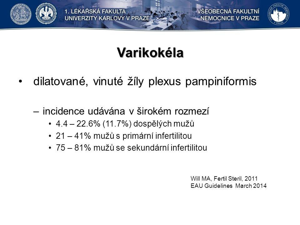 Varikokéla dilatované, vinuté žíly plexus pampiniformis –incidence udávána v širokém rozmezí 4.4 – 22.6% (11.7%) dospělých mužů 21 – 41% mužů s primární infertilitou 75 – 81% mužů se sekundární infertilitou Will MA, Fertil Steril, 2011 EAU Guidelines March 2014