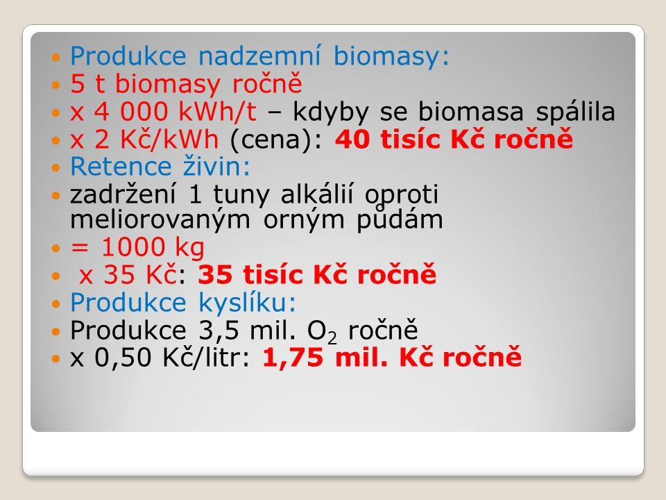 Produkce nadzemní biomasy: 5 t biomasy ročně x 4 000 kWh/t – kdyby se biomasa spálila x 2 Kč/kWh (cena): 40 tisíc Kč ročně Retence živin: zadržení 1 tuny alkálií oproti meliorovaným orným půdám = 1000 kg x 35 Kč: 35 tisíc Kč ročně Produkce kyslíku: Produkce 3,5 mil.