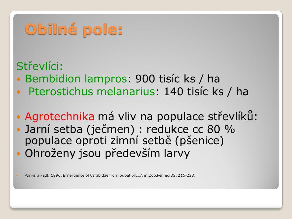 Obilné pole: Střevlíci: Bembidion lampros: 900 tisíc ks / ha Pterostichus melanarius: 140 tisíc ks / ha Agrotechnika má vliv na populace střevlíků: Jarní setba (ječmen) : redukce cc 80 % populace oproti zimní setbě (pšenice) Ohroženy jsou především larvy Purvis a Fadl, 1996: Emergence of Carabidae from pupation….Ann.Zoo.Fennici 33: 215-223.