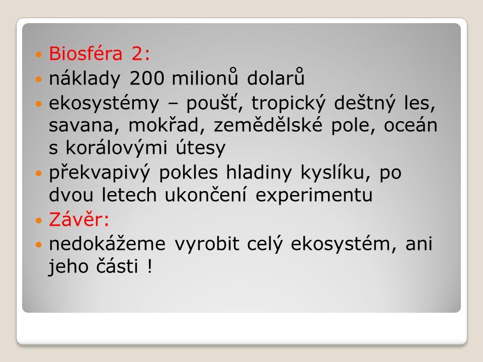 Zdroje prim.org.hmoty v půdě 1.Odumřelá těla živočichů (edafonu) 2.