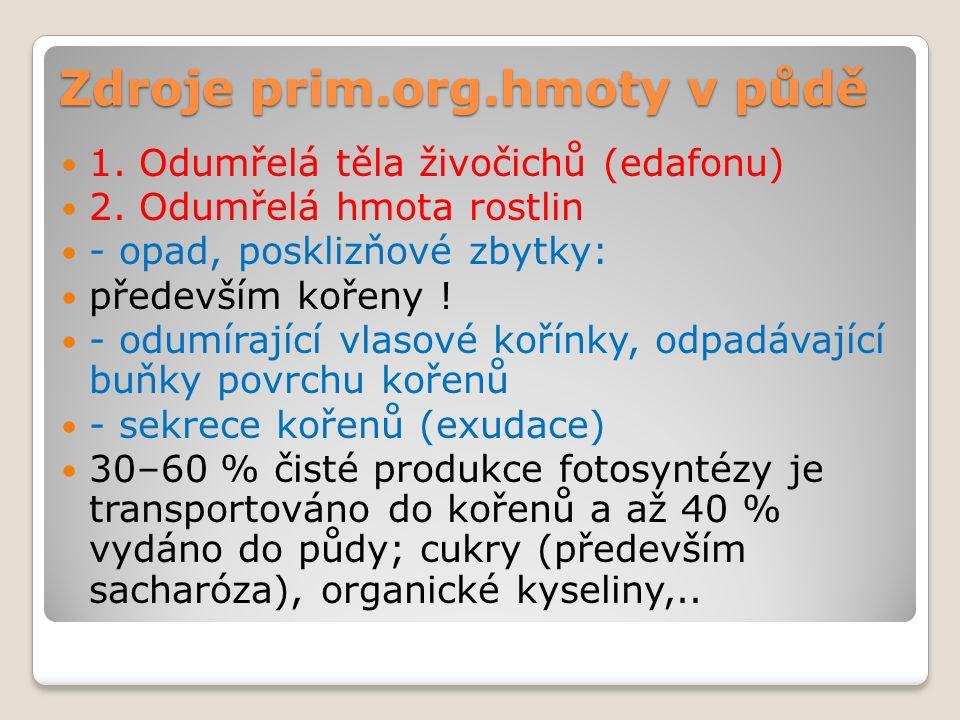 Zdroje prim.org.hmoty v půdě 1. Odumřelá těla živočichů (edafonu) 2.