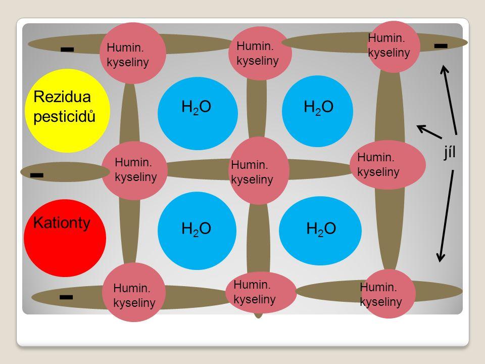 H2OH2O H2OH2O H2OH2O H2OH2O Humin. kyseliny Kationty Rezidua pesticidů - - - - jíl Humin.