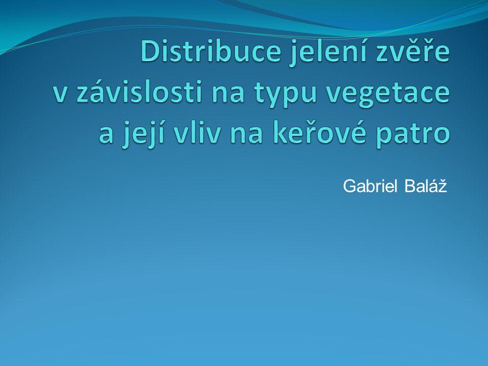 Gabriel Baláž