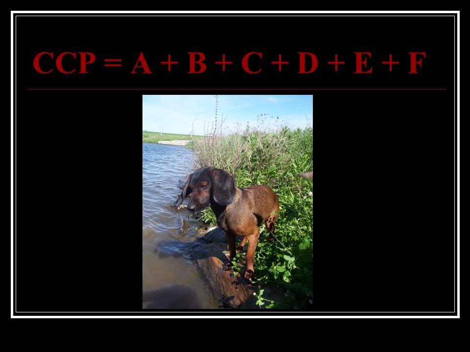 CCP = A + B + C + D + E + F