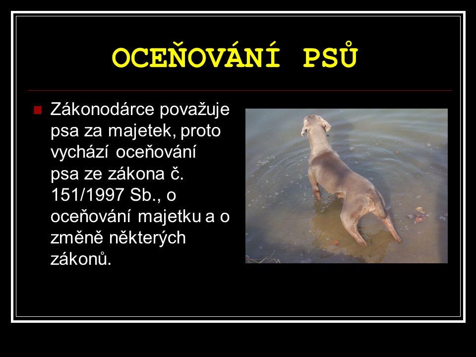 OCEŇOVÁNÍ PSŮ Zákonodárce považuje psa za majetek, proto vychází oceňování psa ze zákona č.