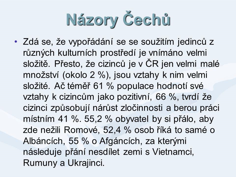 Názory Čechů Zdá se, že vypořádání se se soužitím jedinců z různých kulturních prostředí je vnímáno velmi složitě. Přesto, že cizinců je v ČR jen velm