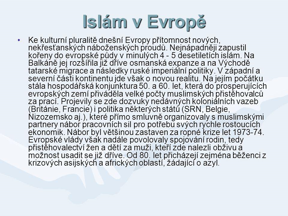 Islám v Evropě Ke kulturní pluralitě dnešní Evropy přítomnost nových, nekřesťanských náboženských proudů. Nejnápadněji zapustil kořeny do evropské půd