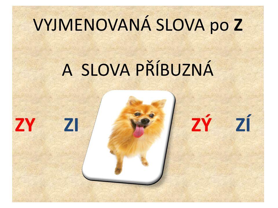 Zkus doplnit správné i, y do vět.Český jaz_k je naším mateřským jaz_kem.
