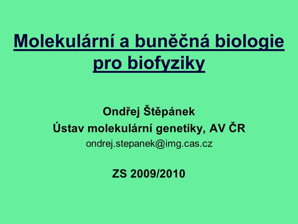 Molekulární a buněčná biologie pro biofyziky Ondřej Štěpánek Ústav molekulární genetiky, AV ČR ondrej.stepanek@img.cas.cz ZS 2009/2010