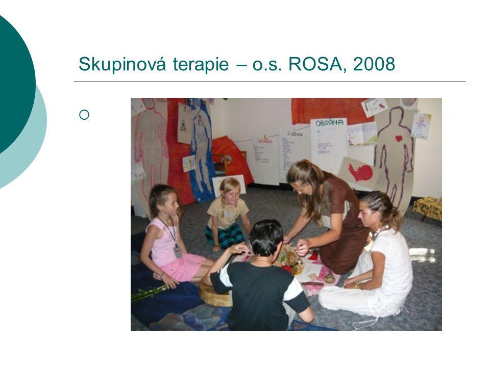 Skupinová terapie – o.s. ROSA, 2008 
