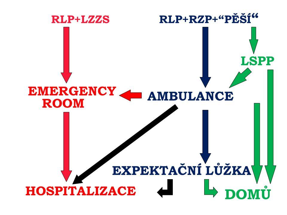 RLP+LZZS RLP+RZP+ PĚŠÍ EMERGENCY ROOM AMBULANCE EXPEKTAČNÍ LŮŽKA HOSPITALIZACE DOMŮ LSPP