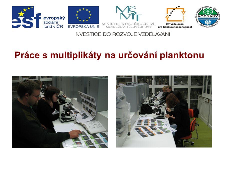 Práce s multiplikáty na určování planktonu