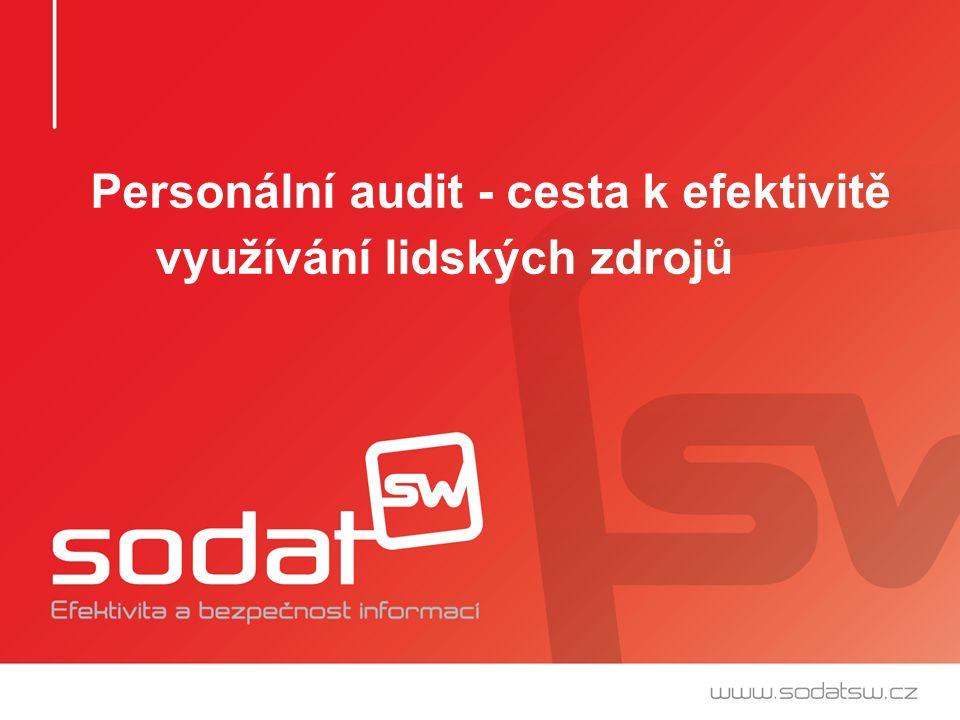 Personální audit - cesta k efektivitě využívání lidských zdrojů