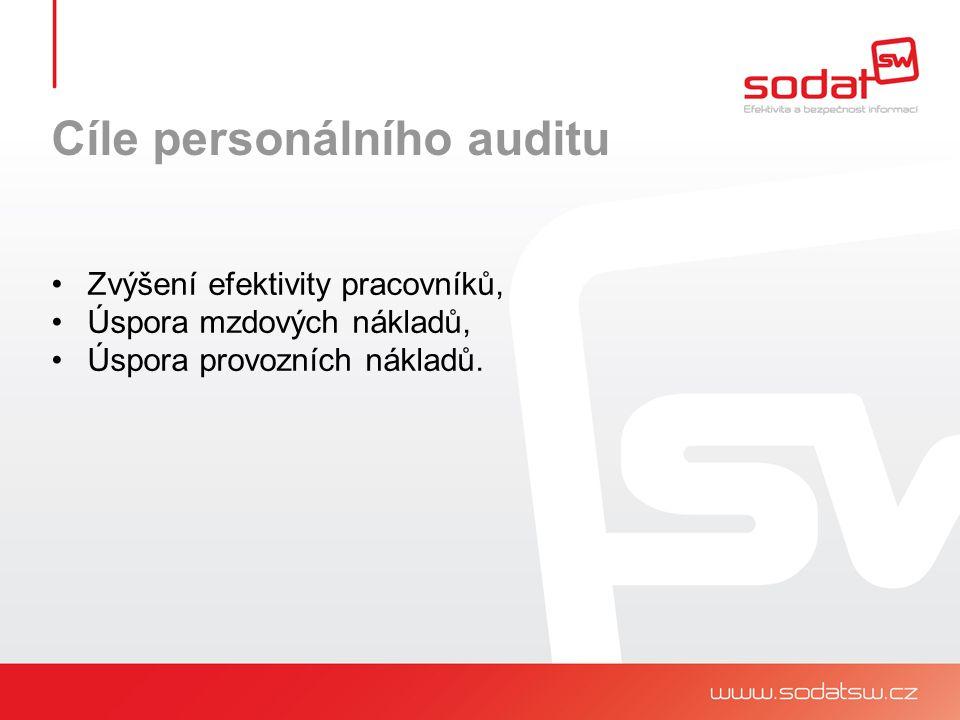 Cíle personálního auditu Zhodnocení stávajících zaměstnanců z hlediska jejich osobnostních charakteristik a požadavků na danou pozici, Zhodnocení pracovní vytíženosti na jednotlivých pracovních pozicích a v návaznosti na to doporučení optimalizace počtu zaměstnanců, Zhodnocení využívání pracovních nástrojů a pracovního času.