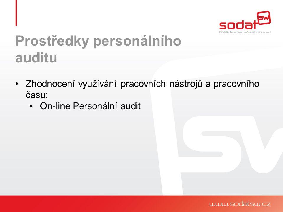 Prostředky personálního auditu Zhodnocení využívání pracovních nástrojů a pracovního času: On-line Personální audit