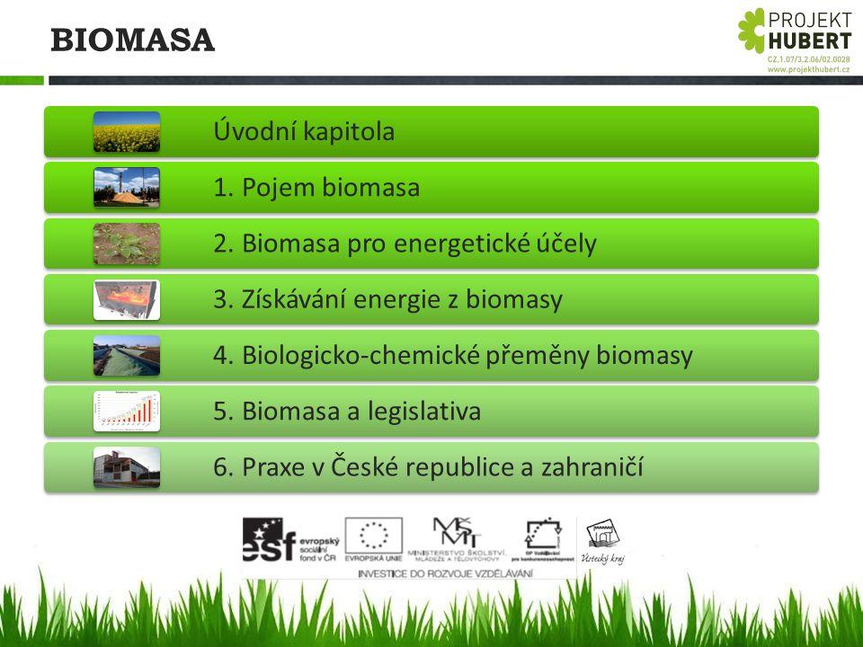 BIOMASA Úvodní kapitola 1. Pojem biomasa 2. Biomasa pro energetické účely 3. Získávání energie z biomasy 4. Biologicko-chemické přeměny biomasy 5. Bio