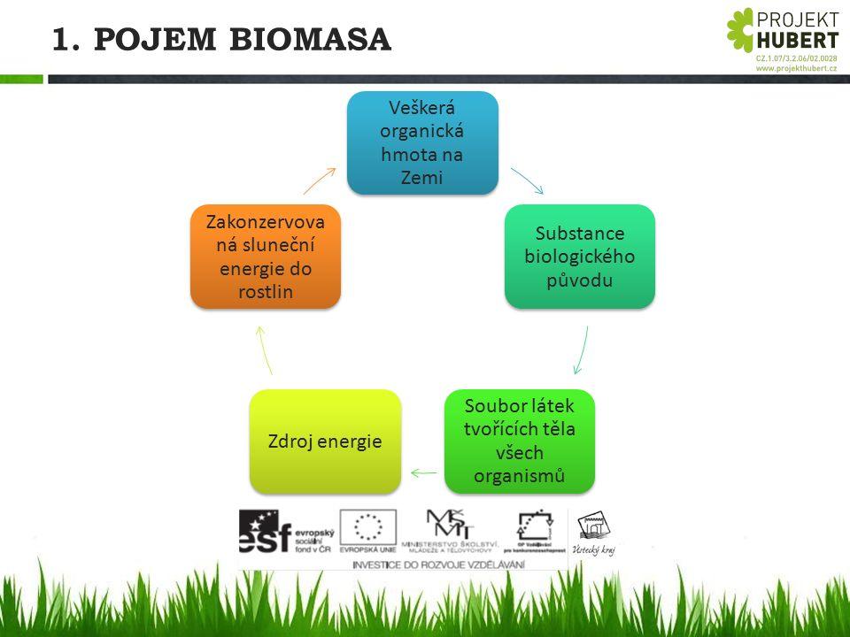 1. POJEM BIOMASA Veškerá organická hmota na Zemi Substance biologického původu Soubor látek tvořících těla všech organismů Zdroj energie Zakonzervova