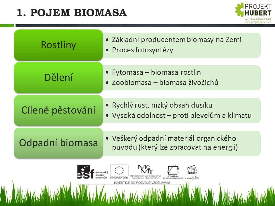 1. POJEM BIOMASA Základní producentem biomasy na Zemi Proces fotosyntézy Rostliny Fytomasa – biomasa rostlin Zoobiomasa – biomasa živočichů Dělení Ryc