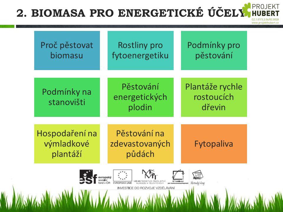 2. BIOMASA PRO ENERGETICKÉ ÚČELY Proč pěstovat biomasu Rostliny pro fytoenergetiku Podmínky pro pěstování Podmínky na stanovišti Pěstování energetický