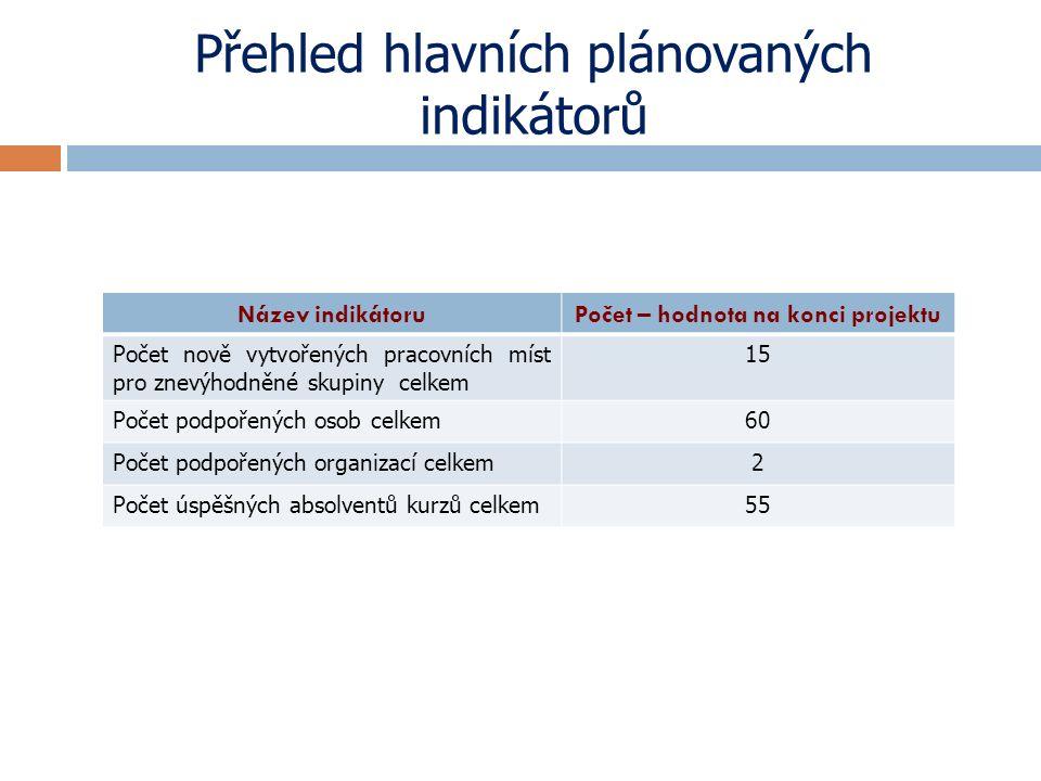 Přehled hlavních plánovaných indikátorů Název indikátoruPočet – hodnota na konci projektu Počet nově vytvořených pracovních míst pro znevýhodněné skup