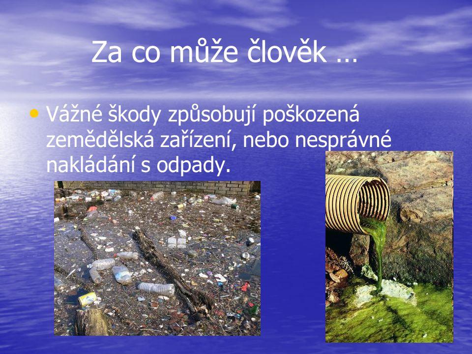Za co může člověk … Vážné škody způsobují poškozená zemědělská zařízení, nebo nesprávné nakládání s odpady.