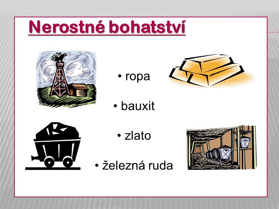 Nerostné bohatství ropa bauxit zlato železná ruda