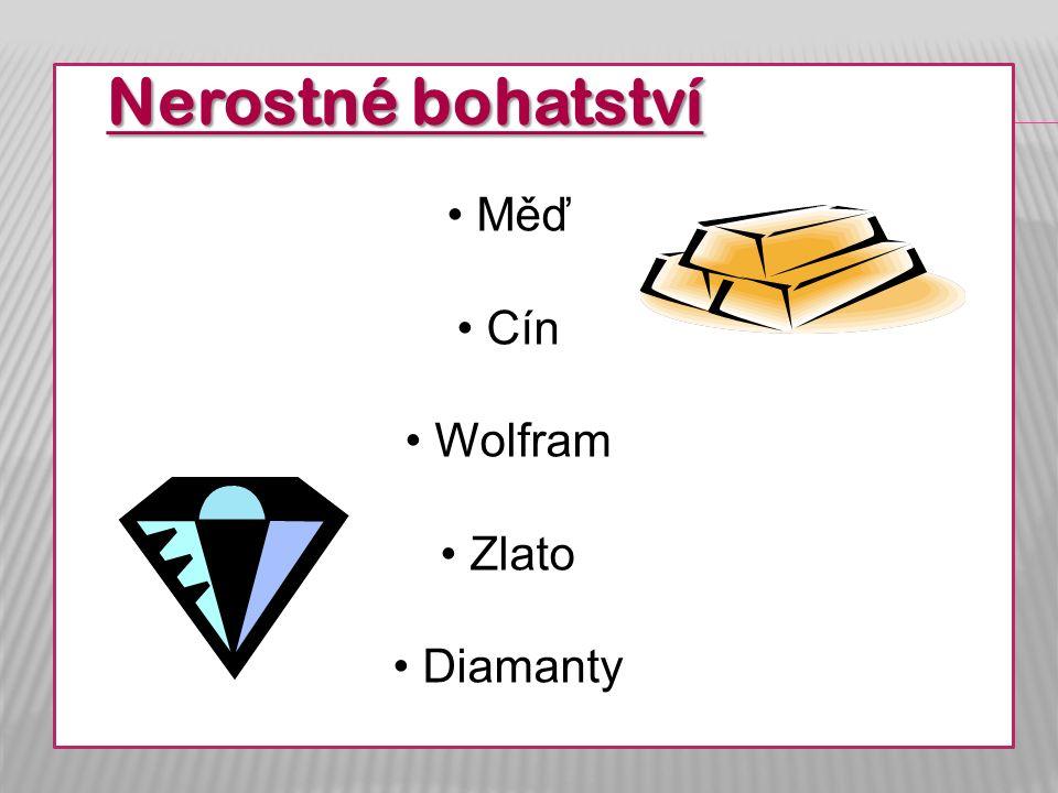 Nerostné bohatství Měď Cín Wolfram Zlato Diamanty