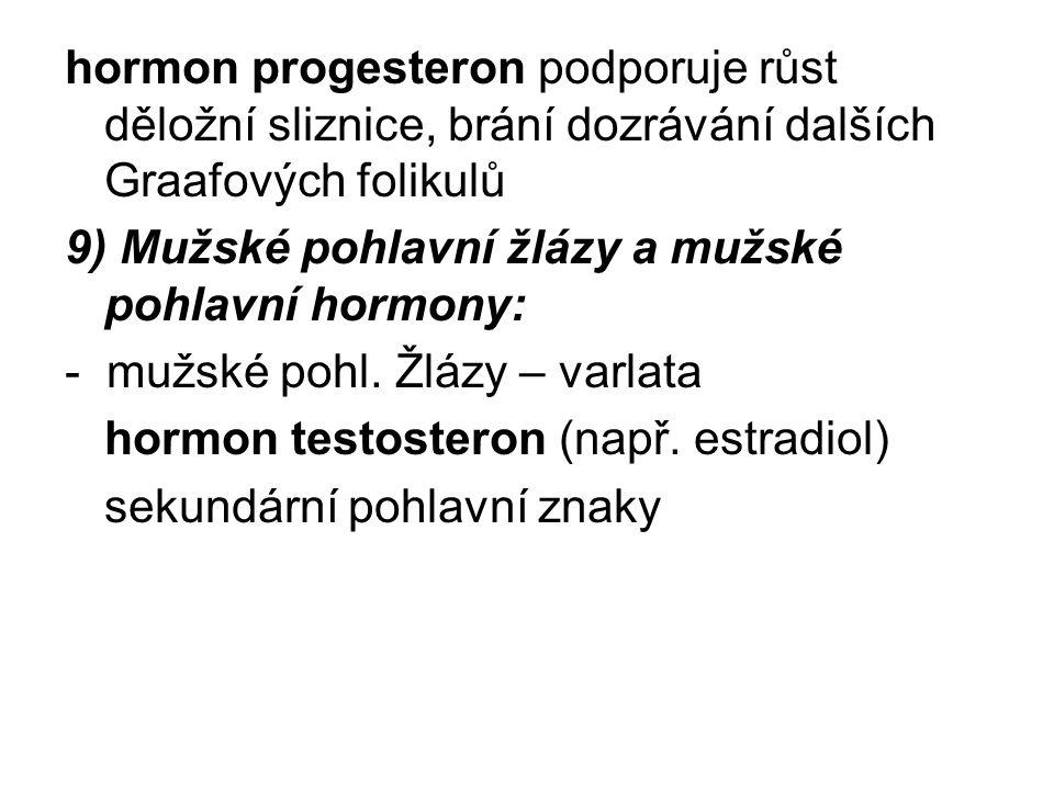 hormon progesteron podporuje růst děložní sliznice, brání dozrávání dalších Graafových folikulů 9) Mužské pohlavní žlázy a mužské pohlavní hormony: - mužské pohl.
