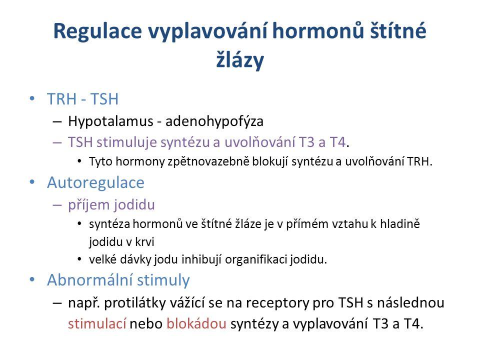 Regulace vyplavování hormonů štítné žlázy TRH - TSH – Hypotalamus - adenohypofýza – TSH stimuluje syntézu a uvolňování T3 a T4.