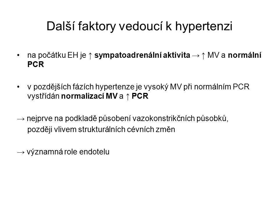 Další faktory vedoucí k hypertenzi na počátku EH je ↑ sympatoadrenální aktivita → ↑ MV a normální PCR v pozdějších fázích hypertenze je vysoký MV při normálním PCR vystřídán normalizací MV a ↑ PCR → nejprve na podkladě působení vazokonstrikčních působků, později vlivem strukturálních cévních změn → významná role endotelu