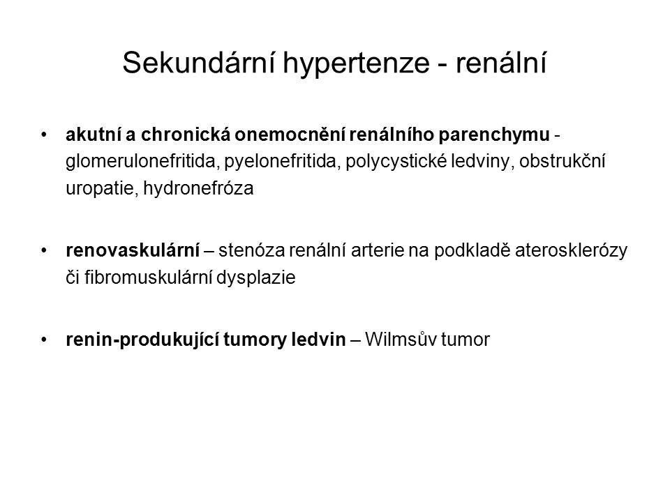 Sekundární hypertenze - renální akutní a chronická onemocnění renálního parenchymu - glomerulonefritida, pyelonefritida, polycystické ledviny, obstrukční uropatie, hydronefróza renovaskulární – stenóza renální arterie na podkladě aterosklerózy či fibromuskulární dysplazie renin-produkující tumory ledvin – Wilmsův tumor