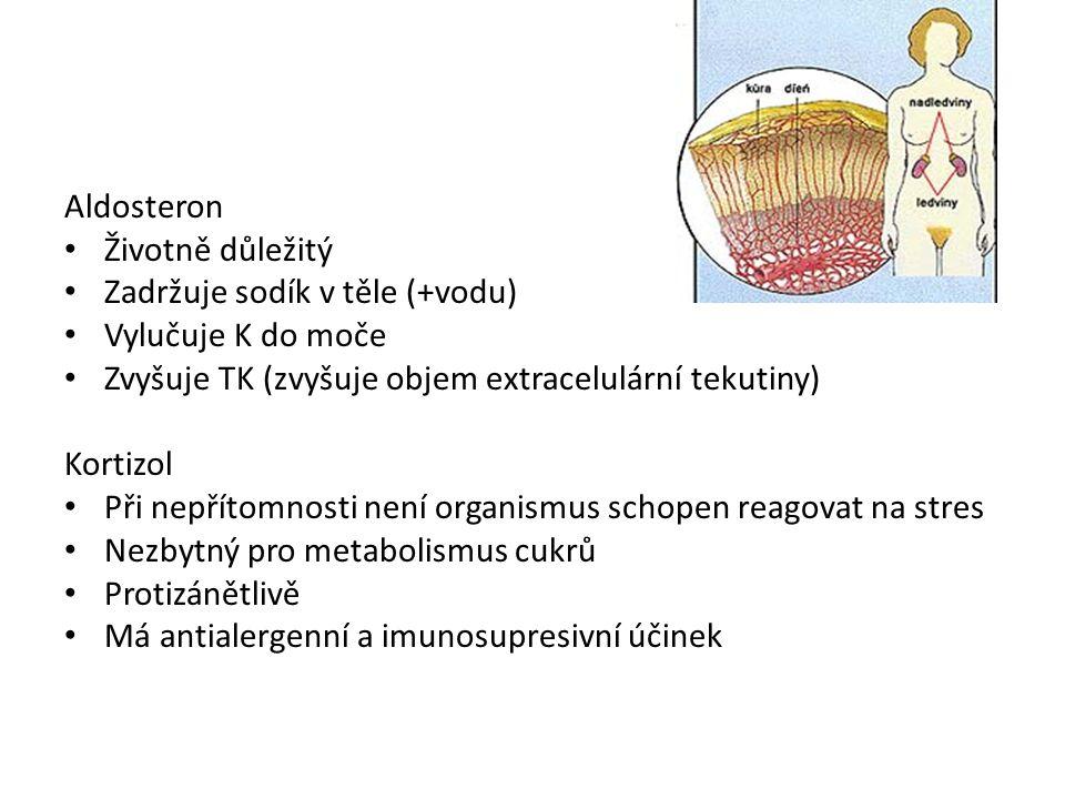 Aldosteron Životně důležitý Zadržuje sodík v těle (+vodu) Vylučuje K do moče Zvyšuje TK (zvyšuje objem extracelulární tekutiny) Kortizol Při nepřítomnosti není organismus schopen reagovat na stres Nezbytný pro metabolismus cukrů Protizánětlivě Má antialergenní a imunosupresivní účinek