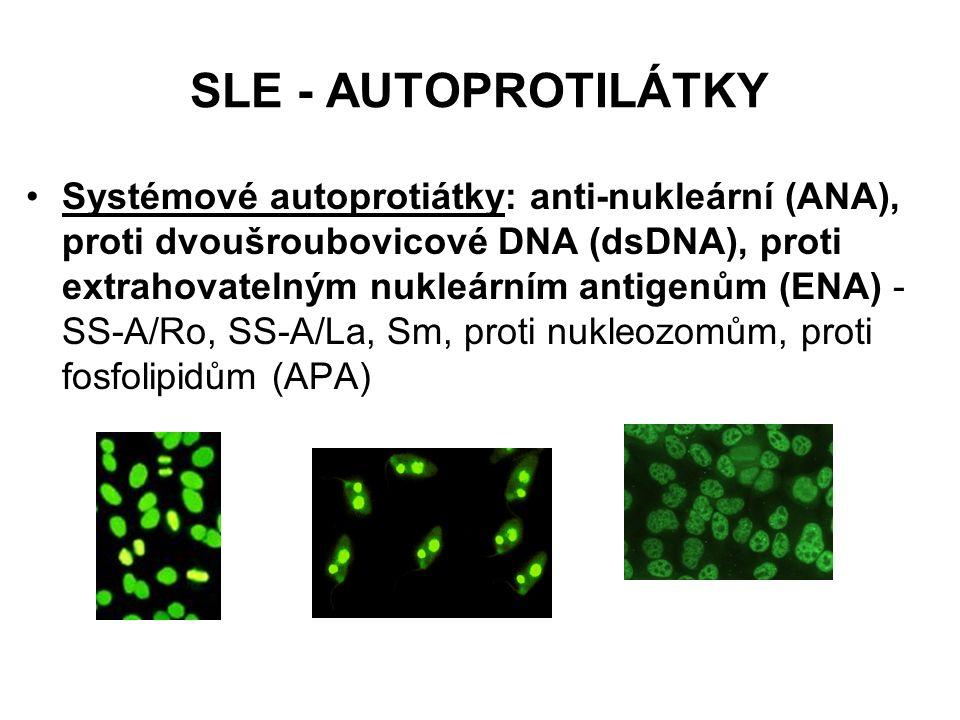 SLE - AUTOPROTILÁTKY Systémové autoprotiátky: anti-nukleární (ANA), proti dvoušroubovicové DNA (dsDNA), proti extrahovatelným nukleárním antigenům (EN