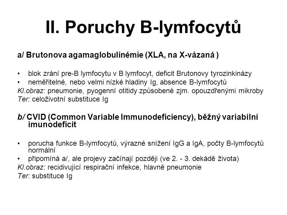 II. Poruchy B-lymfocytů a/ Brutonova agamaglobulinémie (XLA, na X-vázaná ) blok zrání pre-B lymfocytu v B lymfocyt, deficit Brutonovy tyrozinkinázy ne