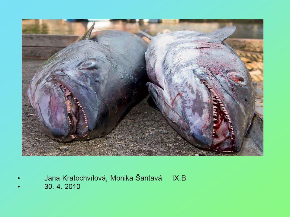 Jana Kratochvílová, Monika Šantavá IX.B 30. 4. 2010