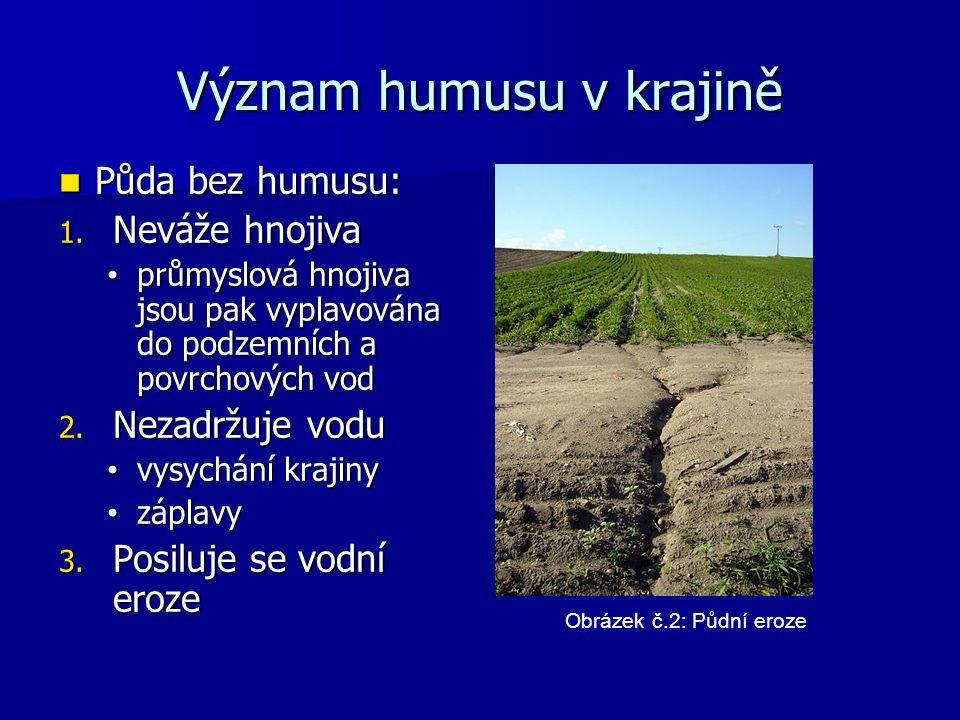 Význam humusu v krajině Půda bez humusu: Půda bez humusu: 1.