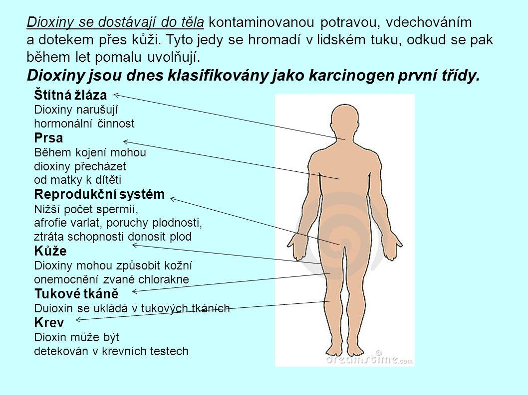 Dioxiny se dostávají do těla kontaminovanou potravou, vdechováním a dotekem přes kůži.